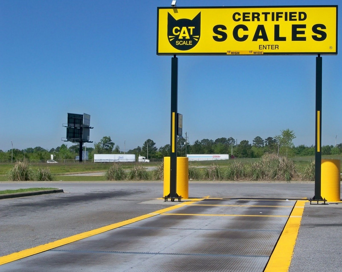 cat-scale